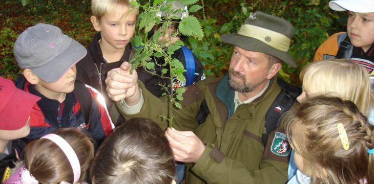 Aktivitäten der Waldschule 2013